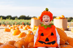 Boy at pumpkin patch royalty free stock image