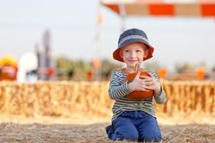 Boy at pumpkin patch Stock Photography