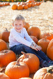 Boy at pumpkin patch Stock Image