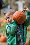 Boy pumpkin picking. Little boy carrying a big heavy pumpkin while pumpkin picking Stock Images