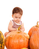 Boy among pumpkins Stock Photography