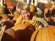 Boy punpkin Stock Photography