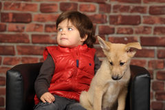 Boy with a puppy Royalty Free Stock Photos