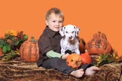 Boy and puppy in Halloween decoration. Boy and cute Dalmatian puppy sitting in Halloween decoration with pumpkins royalty free stock photography