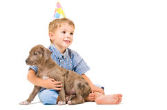 Boy and puppy pitbull Royalty Free Stock Image