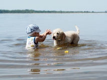 The boy and the puppy playing in the river Stock Photos