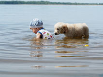 The boy and the puppy playing in the river Royalty Free Stock Image