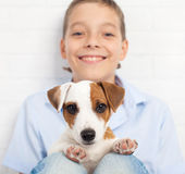 Boy with puppy Stock Images