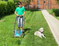 Boy pushing a lawnmower through the yard - accompanied by his do. Boy pushing a lawnmower through the partially mowed yard lawn - accompanied by his lazy royalty free stock images