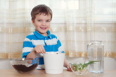 Boy puts plant in pot Royalty Free Stock Images