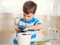Boy puts plant in pot Royalty Free Stock Photography
