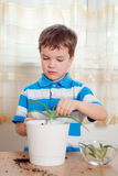 Boy puts plant in pot Stock Photos