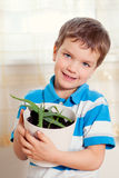 Boy puts plant in pot Stock Photography