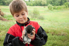 A boy with a rabbit Stock Images