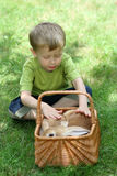 Boy and rabbit Stock Photos