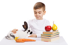 Boy with rabbit Royalty Free Stock Image