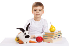 Boy with rabbit Stock Photography