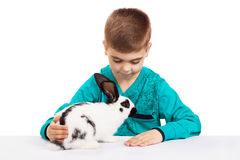 Boy with rabbit Royalty Free Stock Images