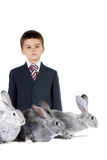 Boy and rabbits Royalty Free Stock Photo