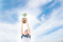 Boy raise little plant stock photos