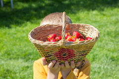 Boy raised basket of strawberries. Boy picked up a basket of strawberries over head Stock Photo
