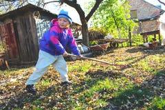Boy rake leaves Stock Image
