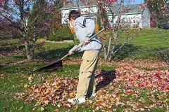 Boy Raking Stock Images