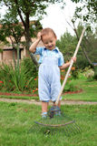 Boy raking in the garden Stock Photo