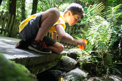 Boy reaching into stream for drink cool clean fresh water from b Royalty Free Stock Photo