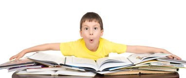 Boy read a book Stock Images