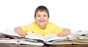 Boy read a book Royalty Free Stock Image
