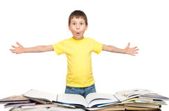Boy read a book Stock Photos