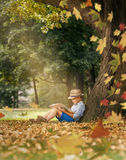 Boy readind under the big linden tree Stock Photography