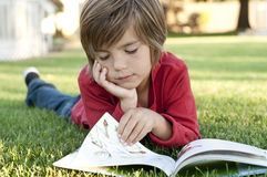 Boy reading stock image