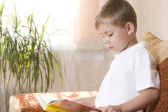 Boy Reading A Book Royalty Free Stock Photo