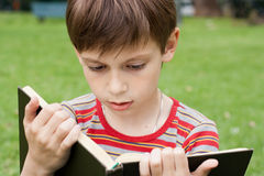 Boy reading a book. Little boy reading a book in the park Royalty Free Stock Photography