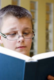 Boy reading book. A clever boy wearing glasses, reading a book. Thoughtful and focused  expression on his face Royalty Free Stock Image