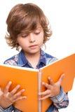Boy reading book Royalty Free Stock Photos