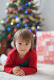 Boy, reading a book in front of a Christmas tree. Stock Images