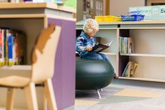 Boy Reading Book In Library Stock Photos