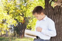 Boy reading book in park Stock Image