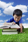 Boy reading books at the park Royalty Free Stock Photography