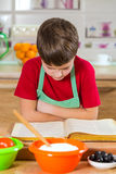 Boy reading the cook book for making the dinner Royalty Free Stock Image