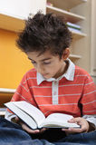Boy reading portrait Stock Images