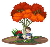 A boy reading under the tree Stock Photos
