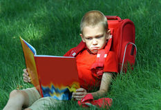 Boy reads the textbook sitting on a grass Royalty Free Stock Images