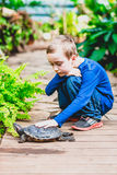 Boy and red-eared turtle Stock Image