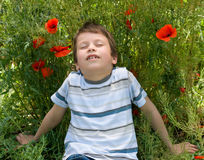 Boy on red flower meadow Stock Photography