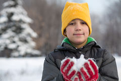 The boy in red gloves holding snow Stock Image