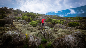 Boy in red jacket adventure extreme vacation Stock Photos
